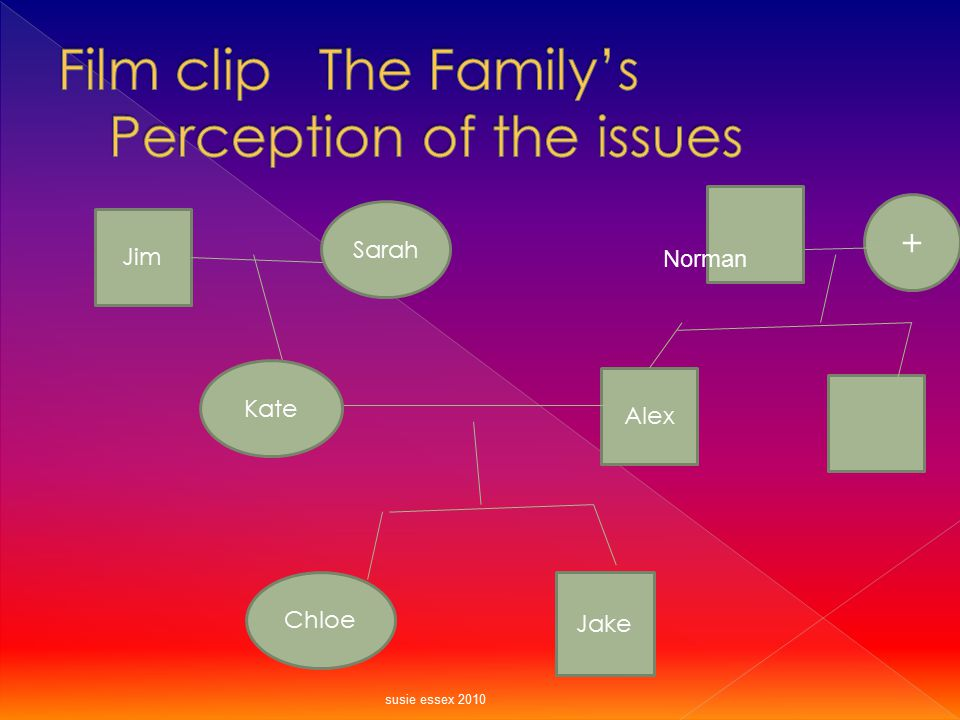Film clip The Family's Perception of the issues