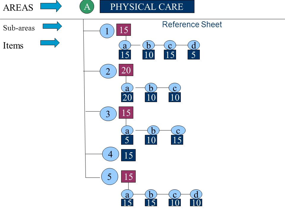 AREAS A PHYSICAL CARE 1 15 Items a b c d 15 10 15 5 2 20 a b c 20 10
