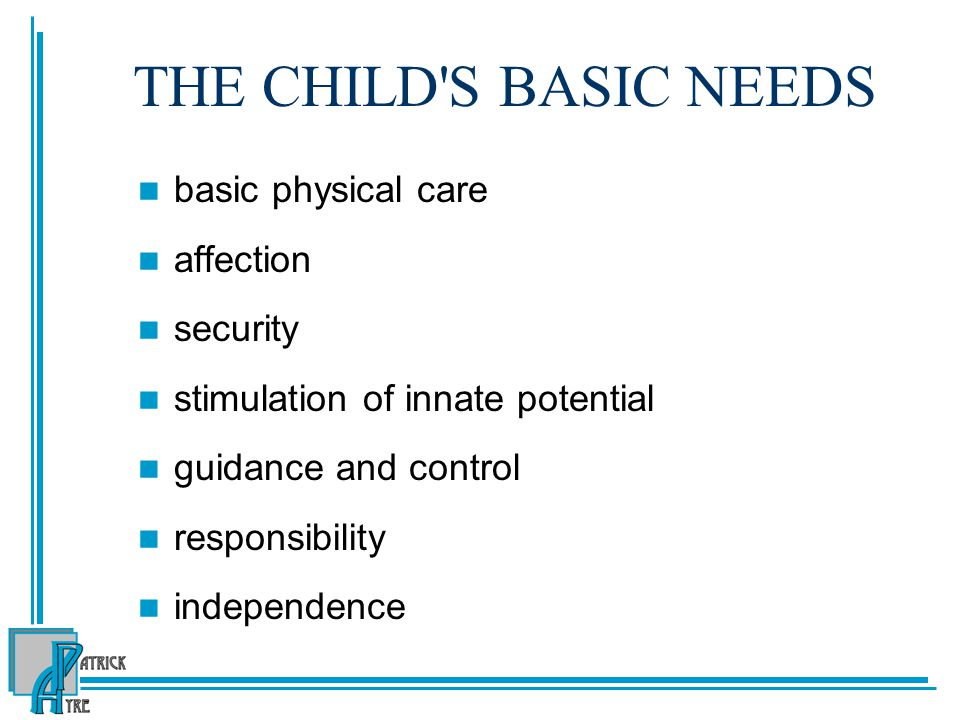THE CHILD S BASIC NEEDS basic physical care affection security