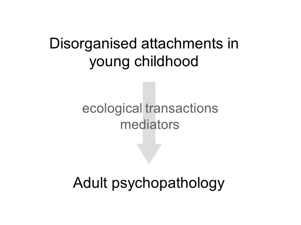 Disorganised attachments in young childhood
