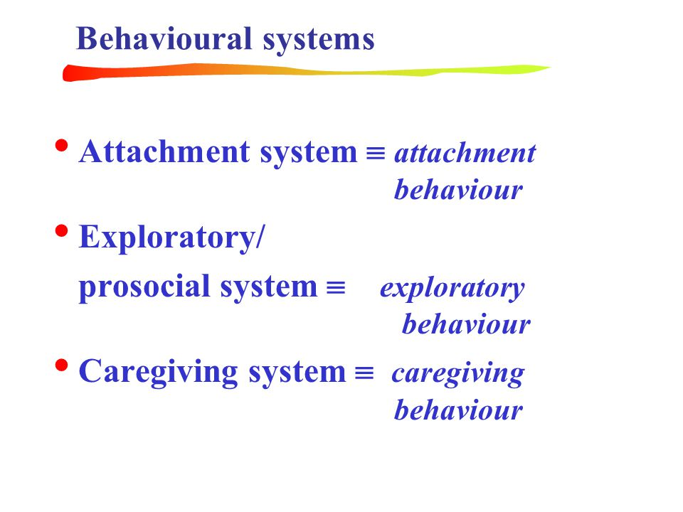 Behavioural systems Attachment system  attachment behaviour. Exploratory/ prosocial system  exploratory behaviour.
