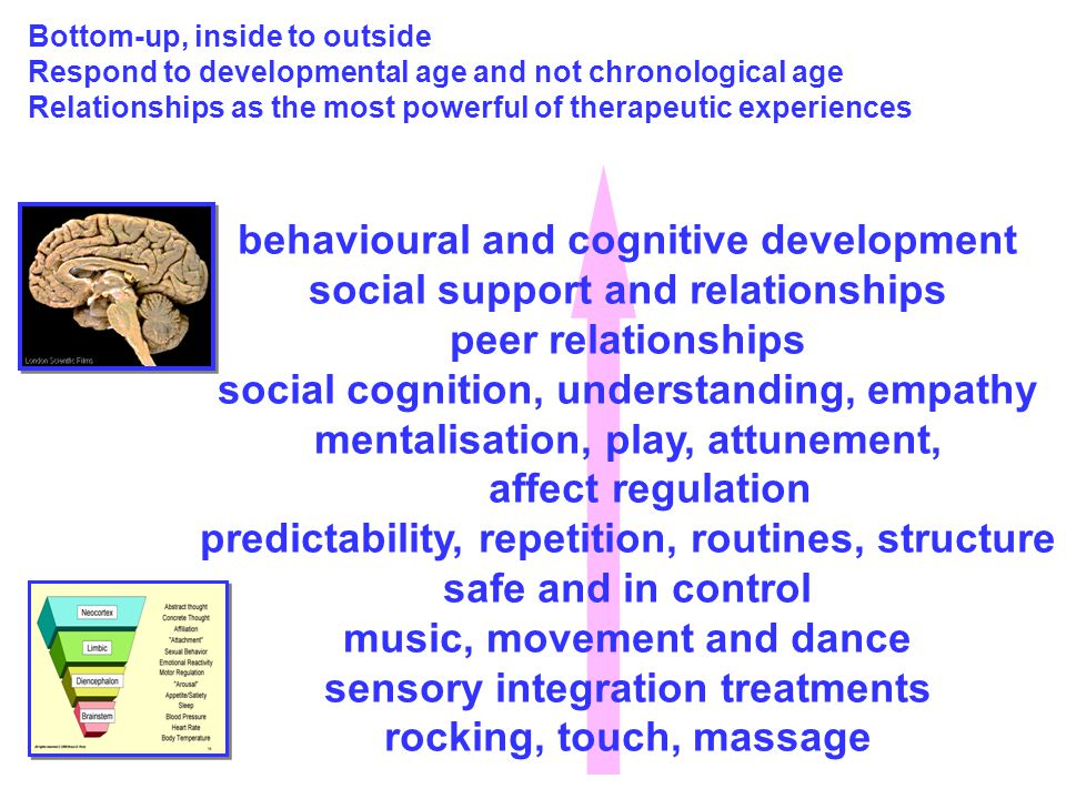 behavioural and cognitive development social support and relationships