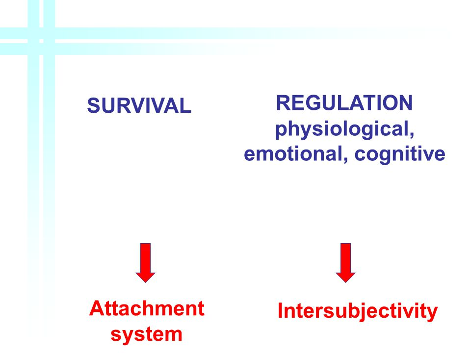SURVIVAL REGULATION physiological, emotional, cognitive Attachment system Intersubjectivity