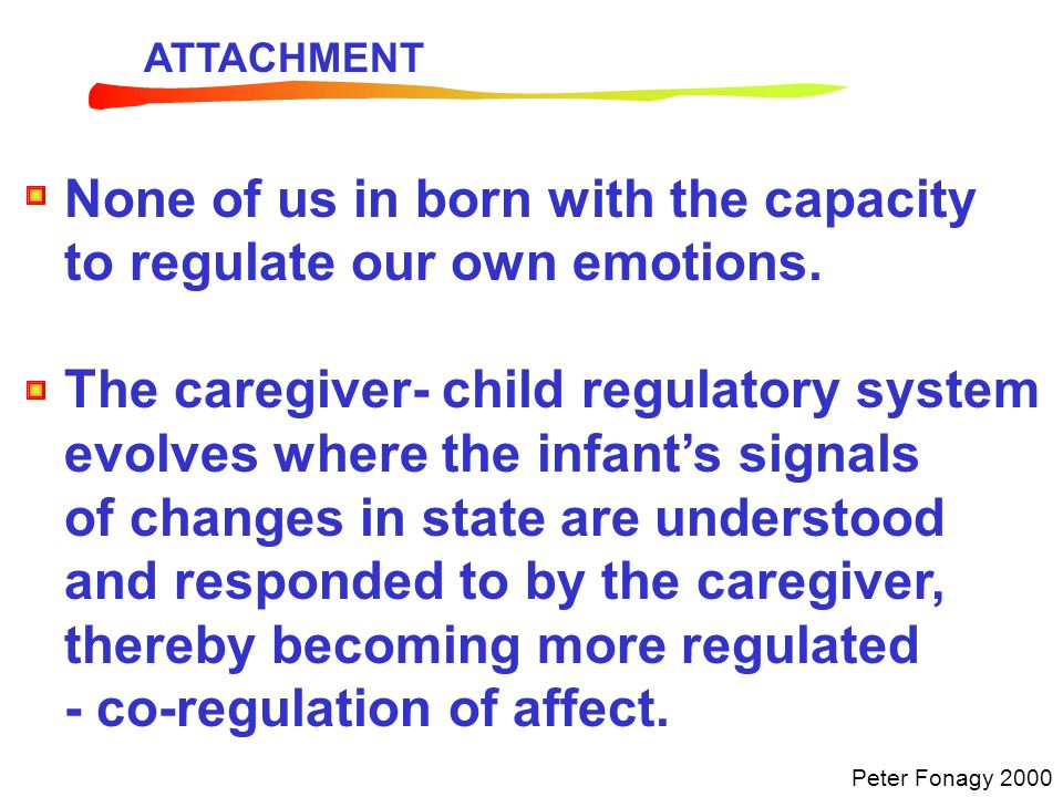 None of us in born with the capacity to regulate our own emotions.