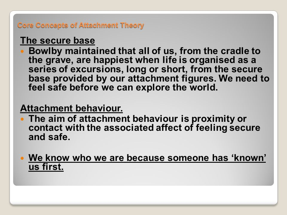 Core Concepts of Attachment Theory