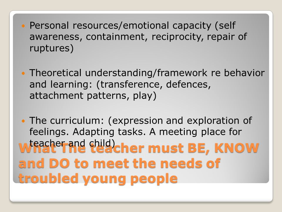 Personal resources/emotional capacity (self awareness, containment, reciprocity, repair of ruptures)