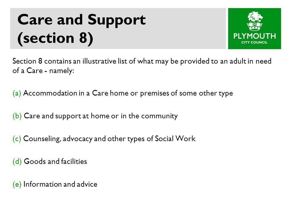 Care and Support (section 8)