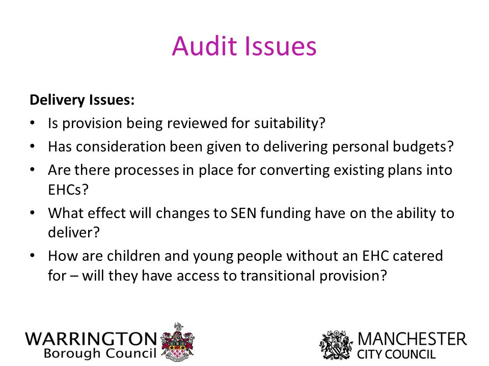 Audit Issues Delivery Issues: