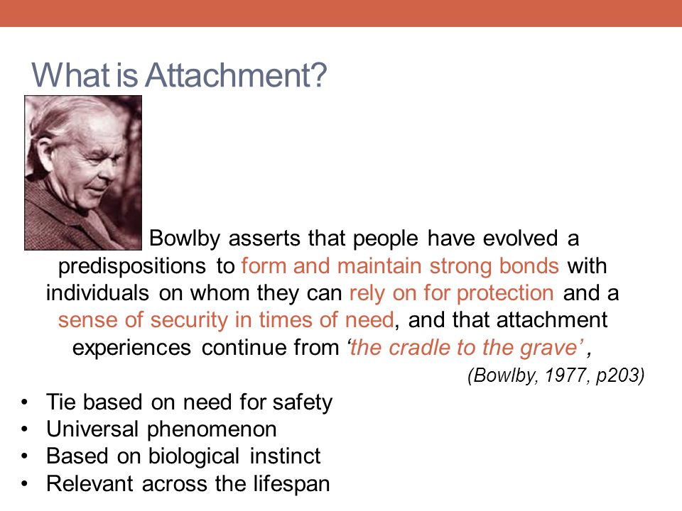 What is Attachment