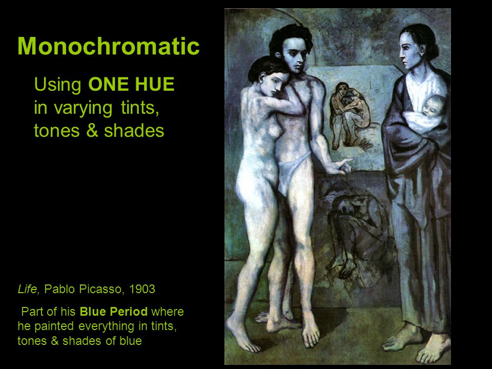 Monochromatic Using ONE HUE in varying tints, tones & shades