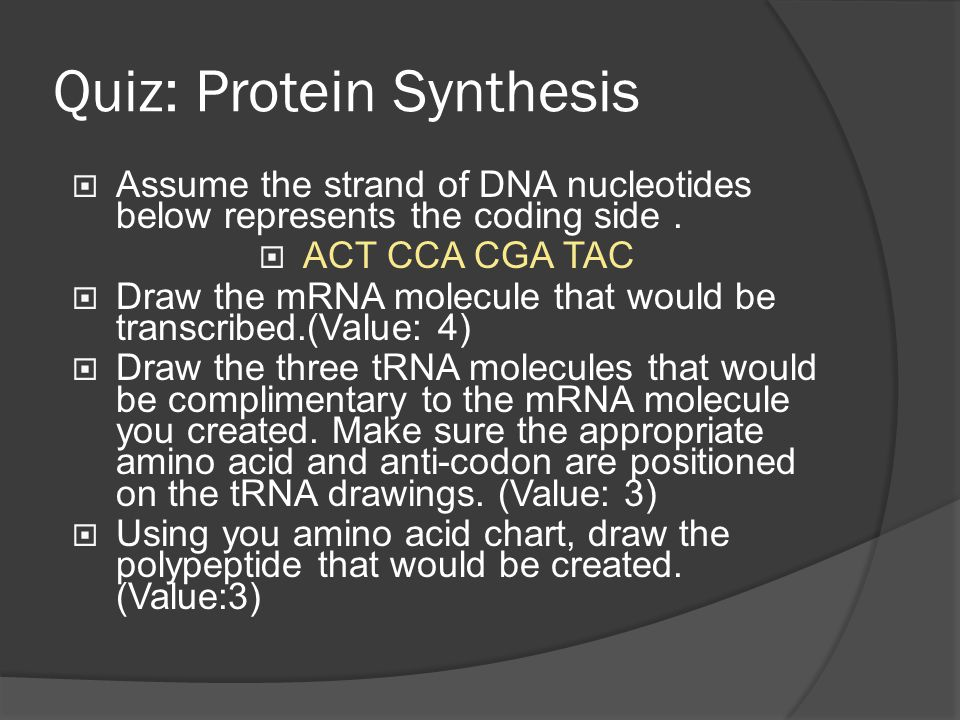 Quiz: Protein Synthesis