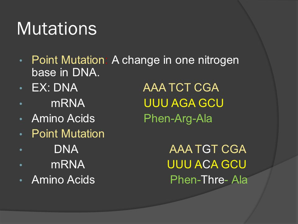 Mutations Point Mutation: A change in one nitrogen base in DNA.