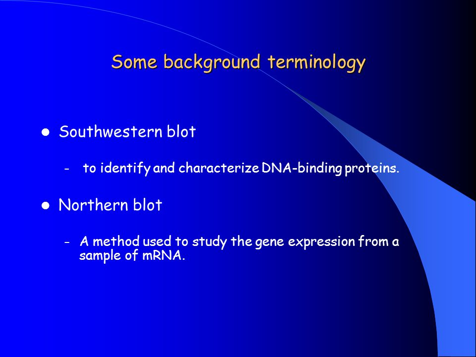 Some background terminology