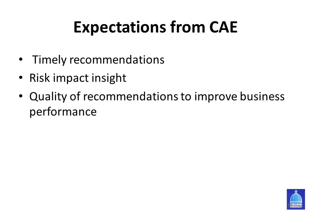 Expectations from CAE Timely recommendations Risk impact insight
