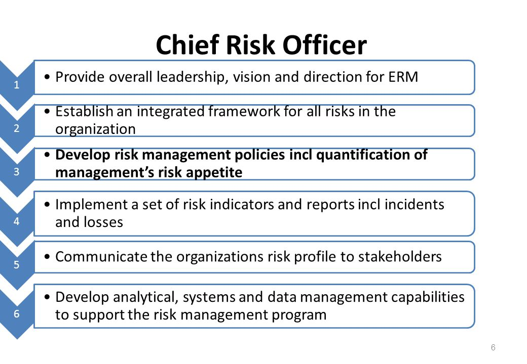 Chief Risk Officer 1. Provide overall leadership, vision and direction for ERM. 2.