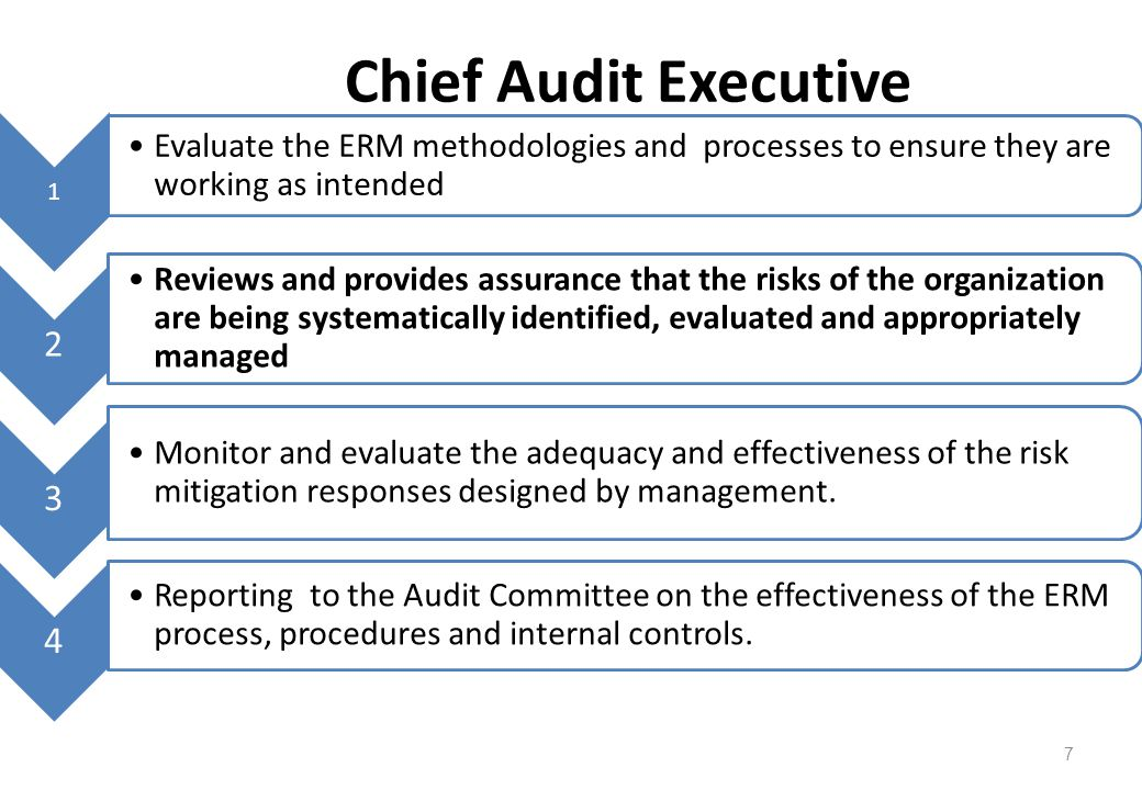 Chief Audit Executive 1. Evaluate the ERM methodologies and processes to ensure they are working as intended.