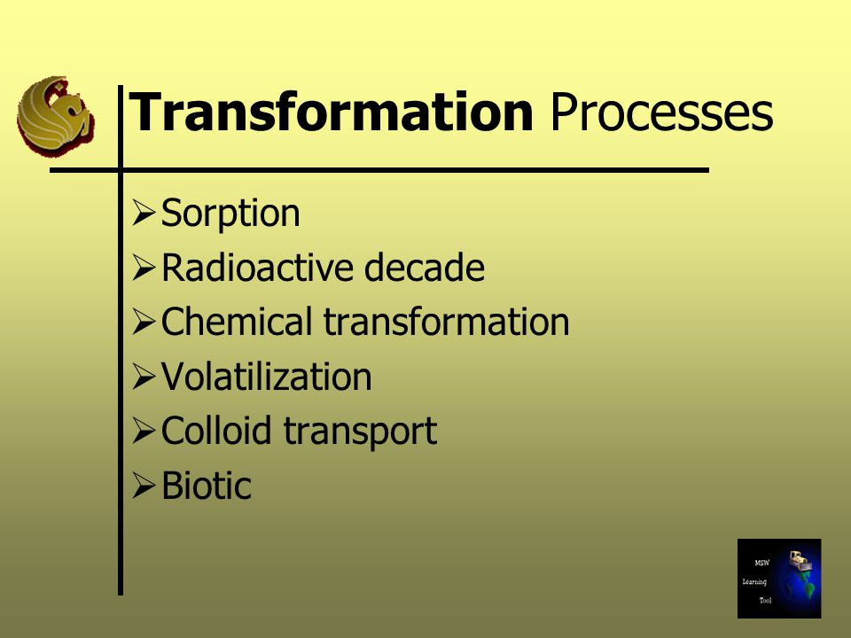 Transformation Processes