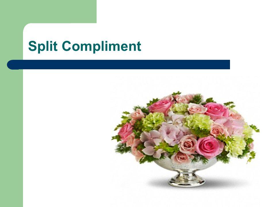 Split Compliment