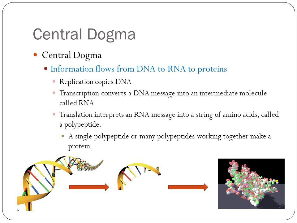 Central Dogma Central Dogma