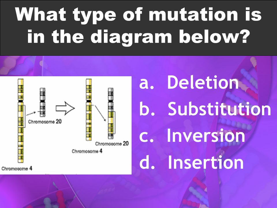 What type of mutation is in the diagram below