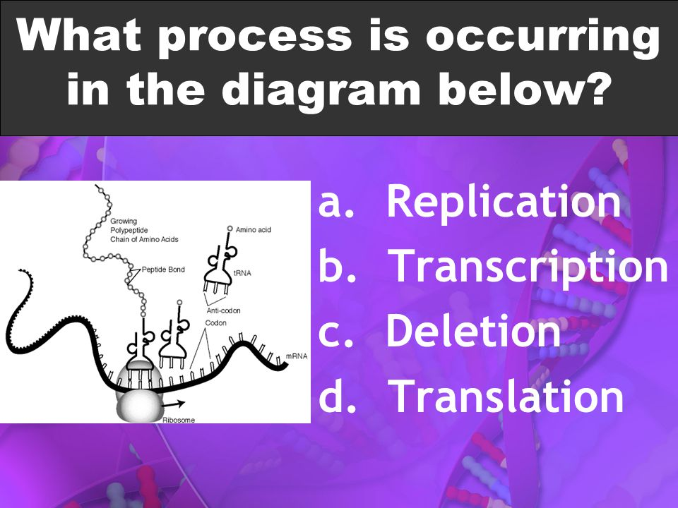 What process is occurring in the diagram below