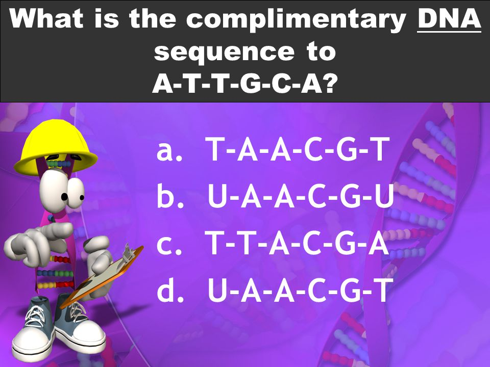 What is the complimentary DNA sequence to A-T-T-G-C-A