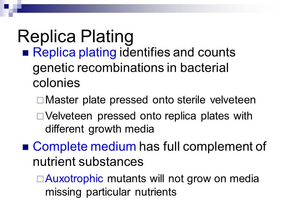 Replica Plating Replica plating identifies and counts genetic recombinations in bacterial colonies.
