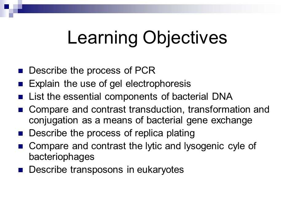 Learning Objectives Describe the process of PCR