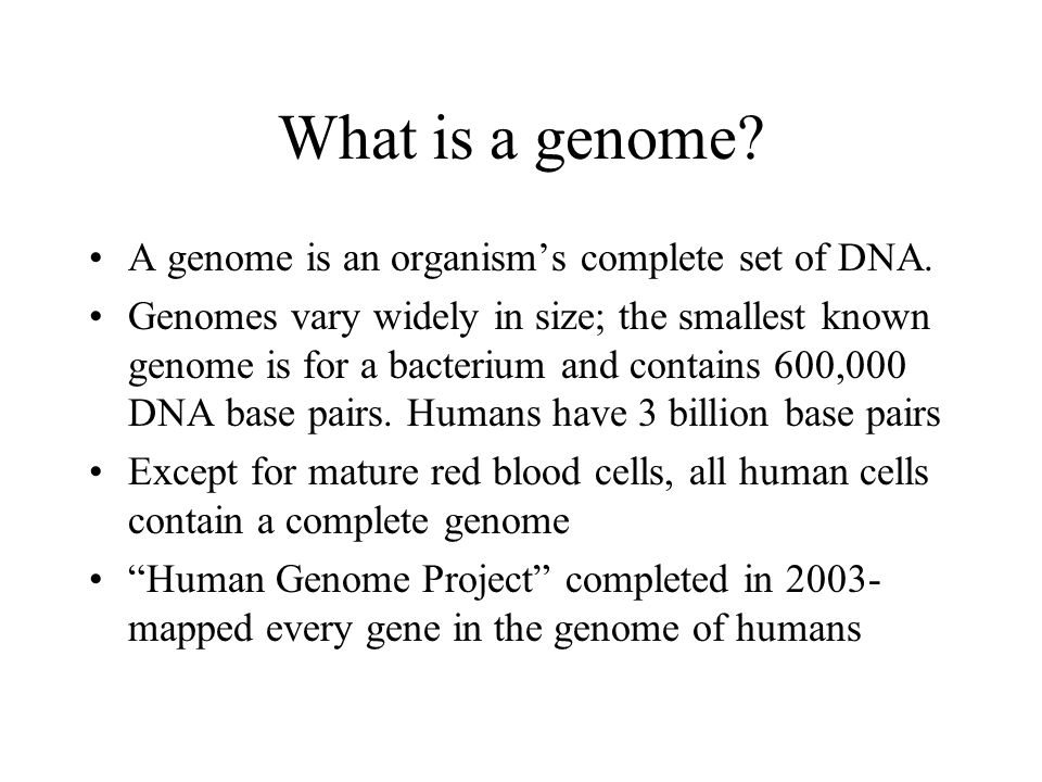 What is a genome A genome is an organism's complete set of DNA.