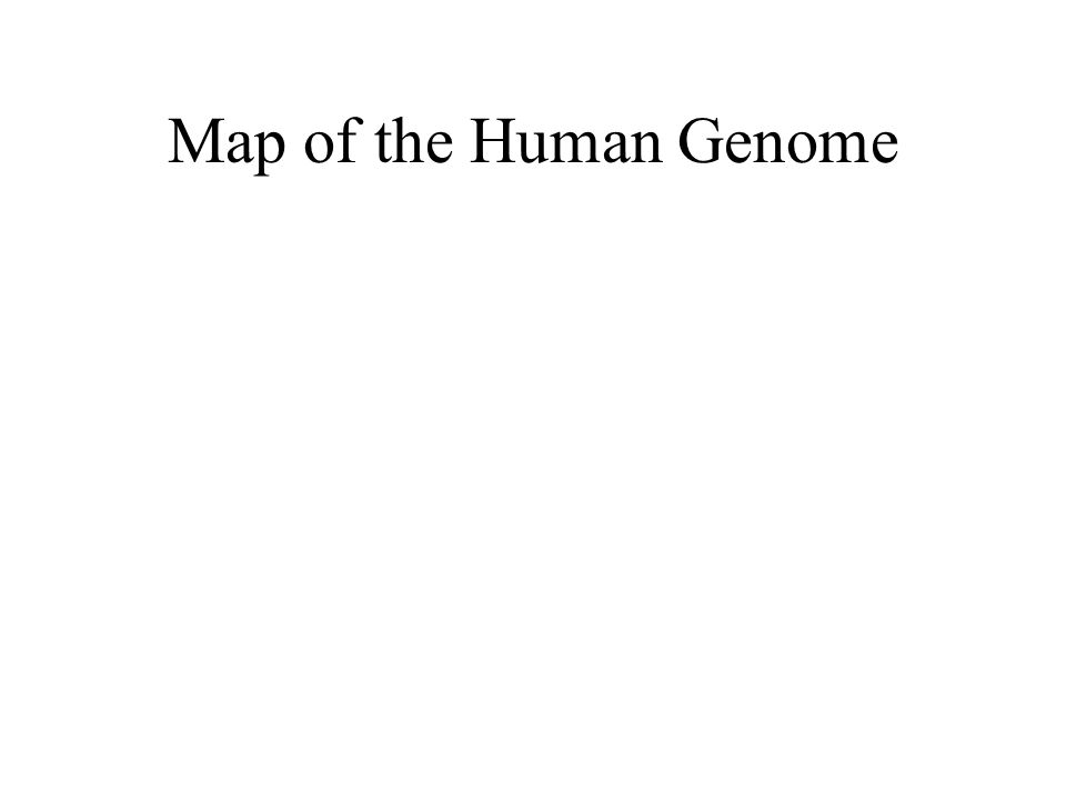 Map of the Human Genome
