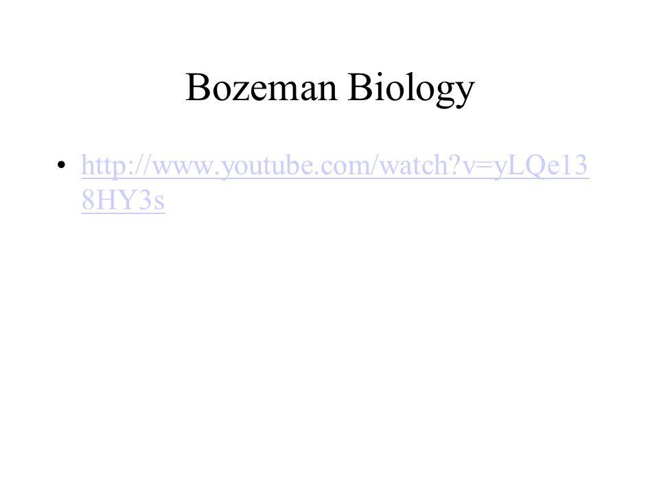 Bozeman Biology http://www.youtube.com/watch v=yLQe138HY3s
