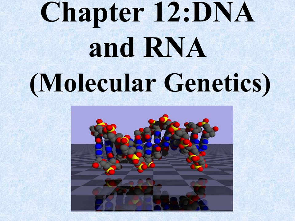 Chapter 12:DNA and RNA (Molecular Genetics)