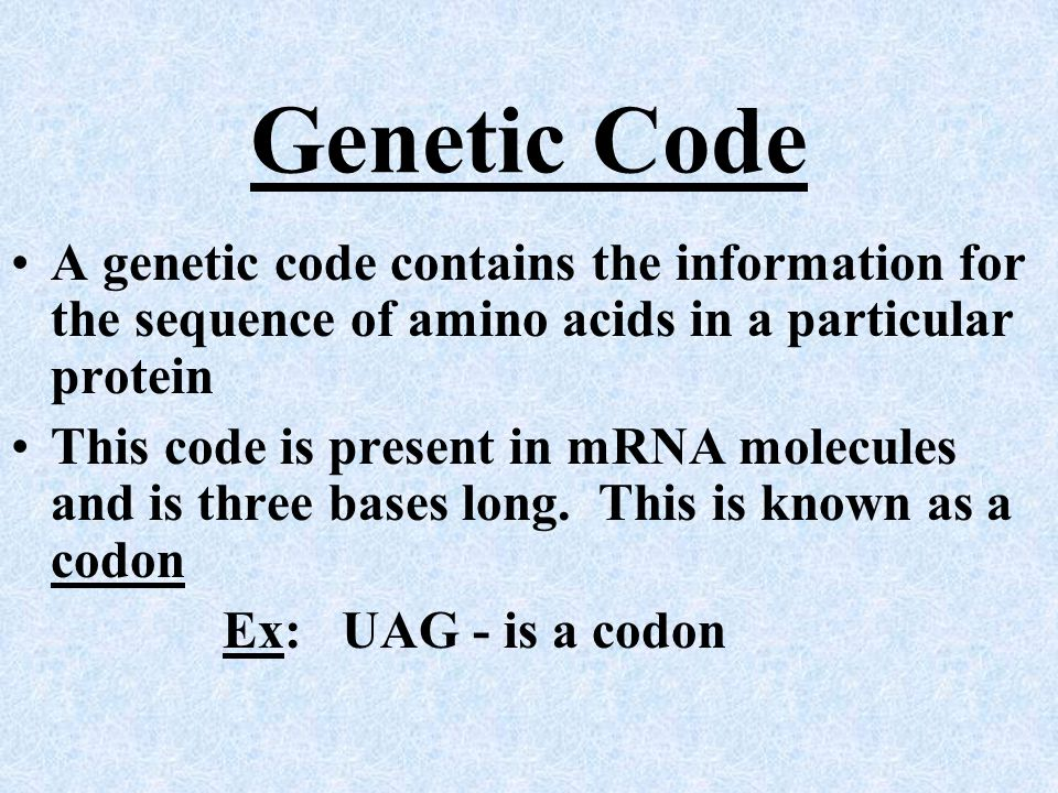 Genetic Code A genetic code contains the information for the sequence of amino acids in a particular protein.