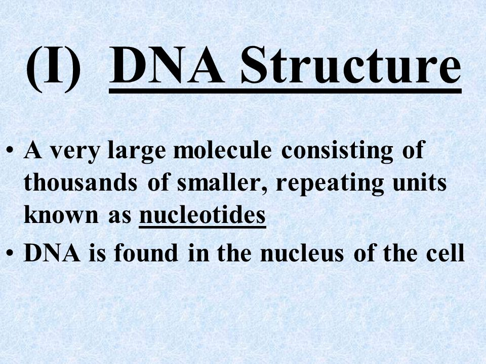 (I) DNA Structure A very large molecule consisting of thousands of smaller, repeating units known as nucleotides.
