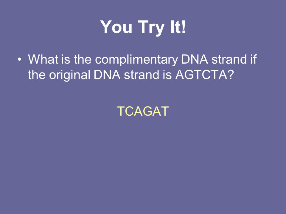 You Try It! What is the complimentary DNA strand if the original DNA strand is AGTCTA TCAGAT