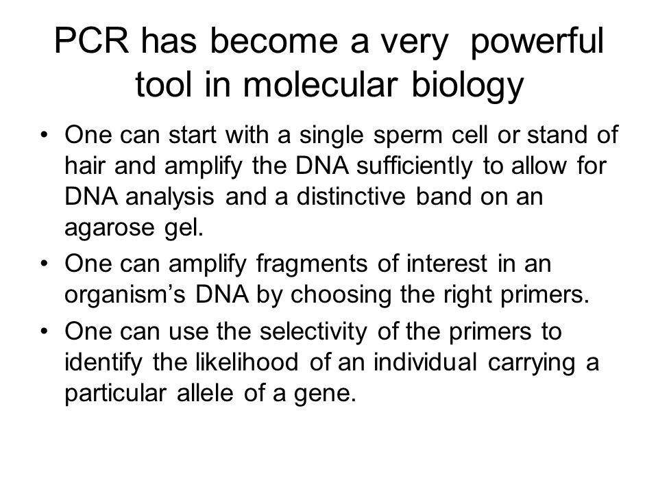 PCR has become a very powerful tool in molecular biology