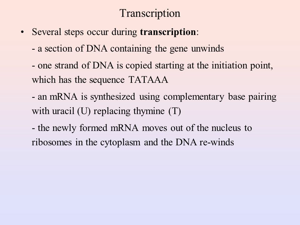 Transcription Several steps occur during transcription:
