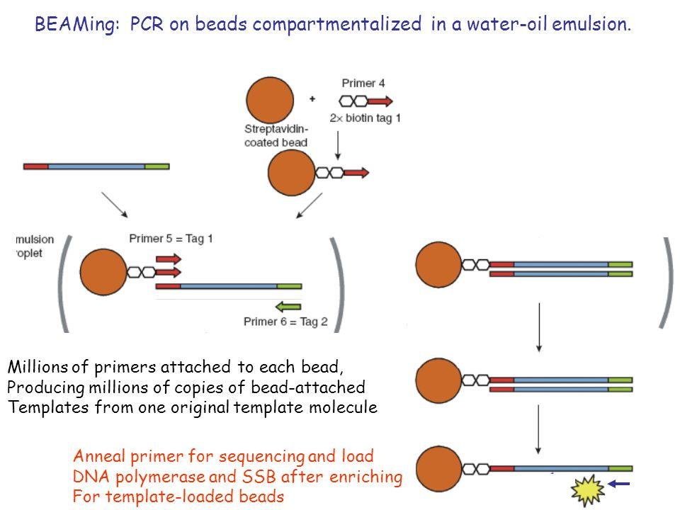 BEAMing: PCR on beads compartmentalized in a water-oil emulsion.