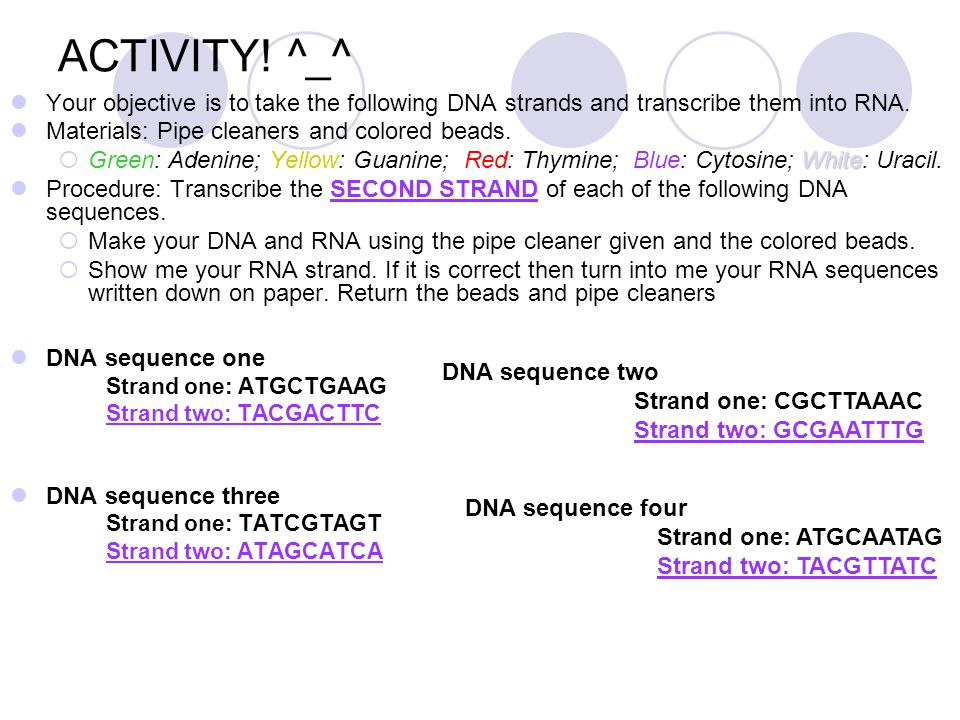ACTIVITY! ^_^ Your objective is to take the following DNA strands and transcribe them into RNA. Materials: Pipe cleaners and colored beads.