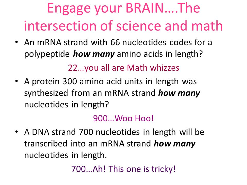 Engage your BRAIN….The intersection of science and math