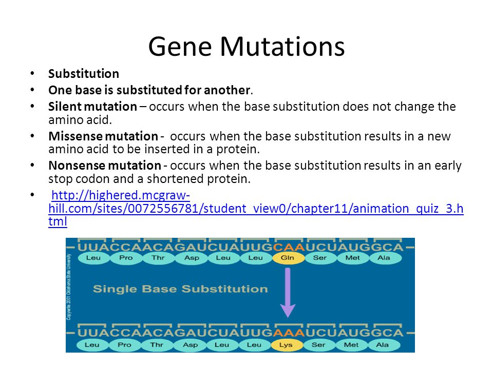 Gene Mutations Substitution One base is substituted for another.