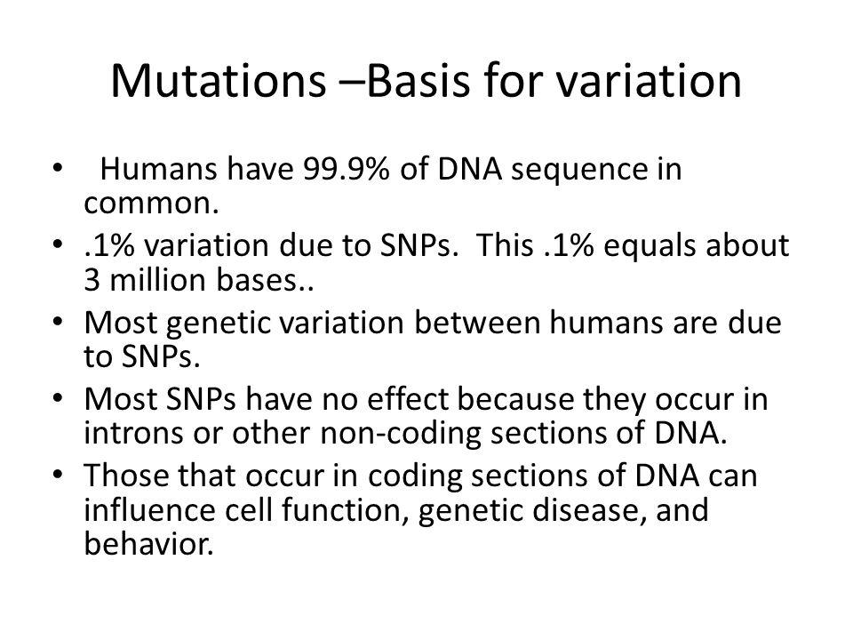 Mutations –Basis for variation