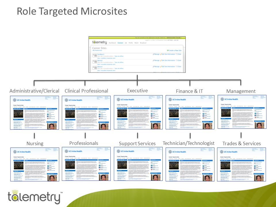 Role Targeted Microsites