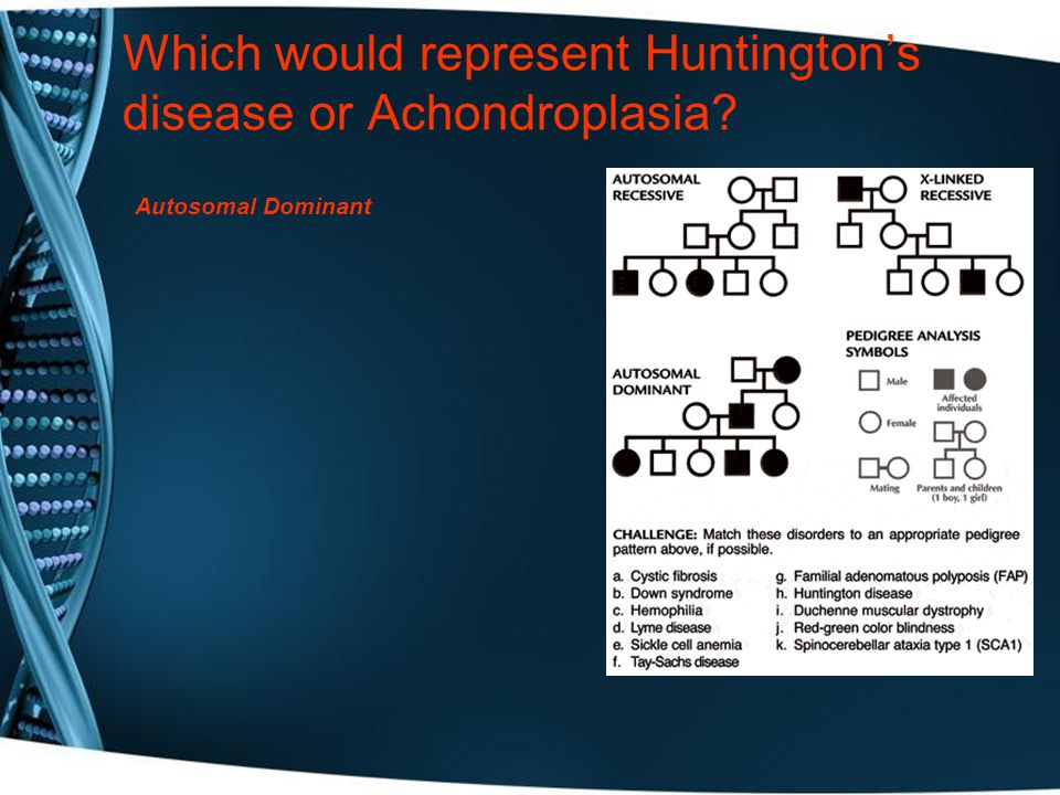 Which would represent Huntington's disease or Achondroplasia