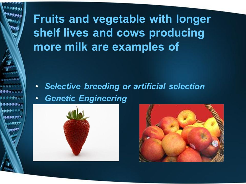 Fruits and vegetable with longer shelf lives and cows producing more milk are examples of