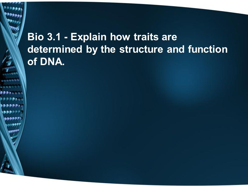 Bio 3.1 - Explain how traits are determined by the structure and function of DNA.