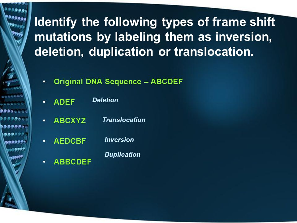 Identify the following types of frame shift mutations by labeling them as inversion, deletion, duplication or translocation.
