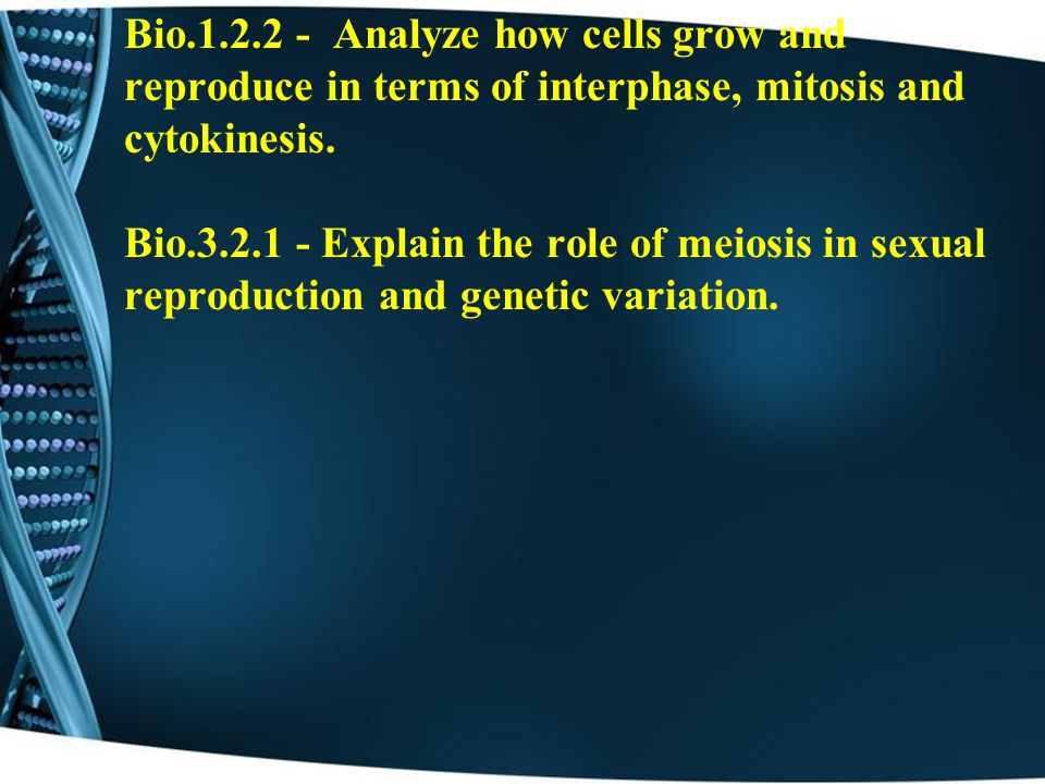 Bio.1.2.2 - Analyze how cells grow and reproduce in terms of interphase, mitosis and cytokinesis.
