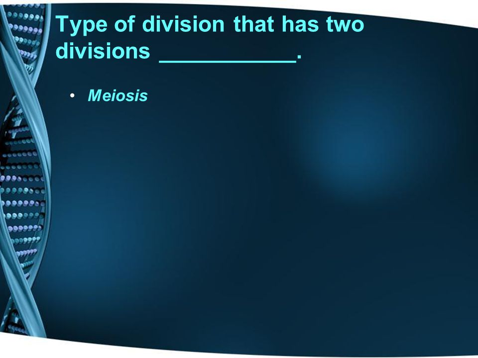 Type of division that has two divisions ___________.