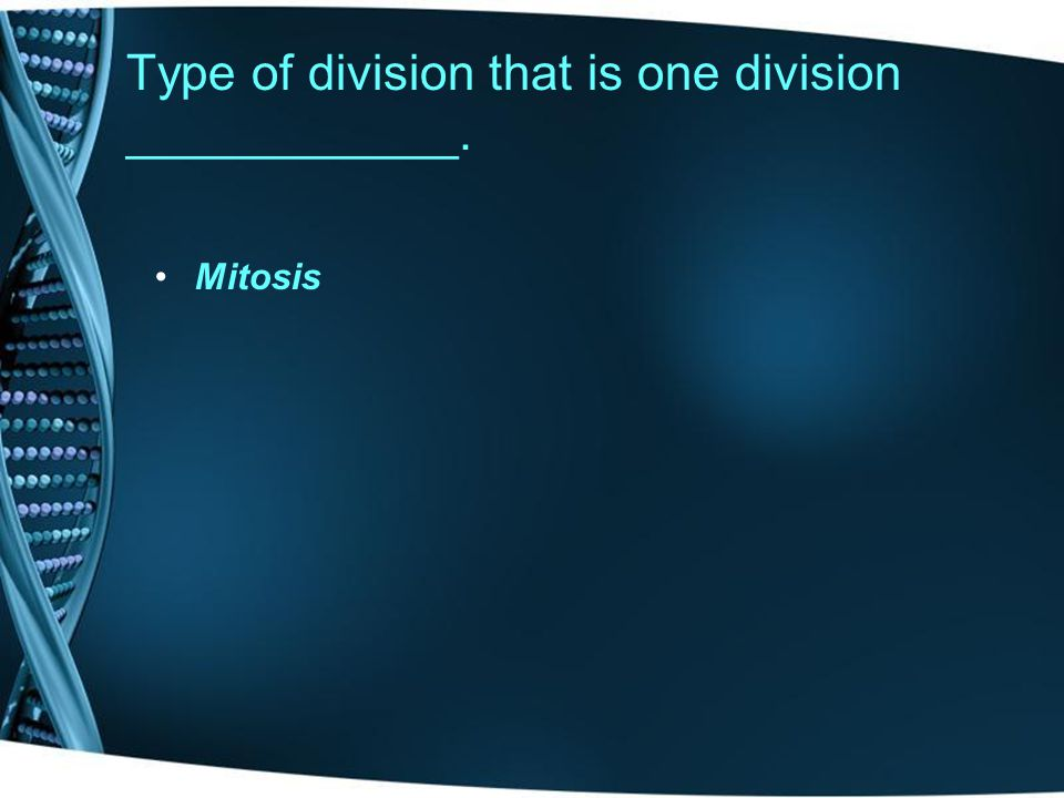 Type of division that is one division ____________.